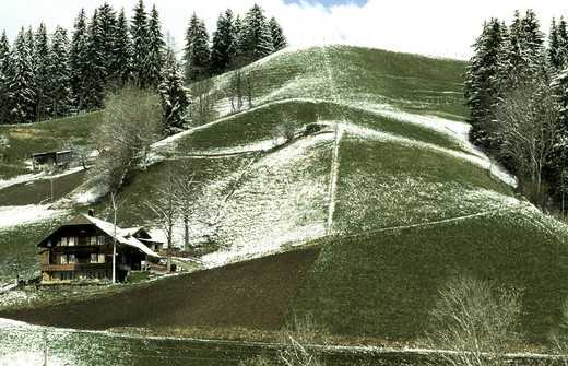 Stock Photo: 1597-121515  Switzerland, Europe, Bern, winter, Emmental, near brook Jass, alp, farm, powdered hills,