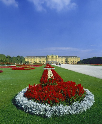 castle Schonbrunn, park, flowers, Vienna, Austria, Europe : Stock Photo