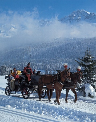 Stock Photo: 1597-12437 clouds, coach, company, excursion, family, guests, horse´s coach, horses, mountains, snow, spare time, Alps, winter,