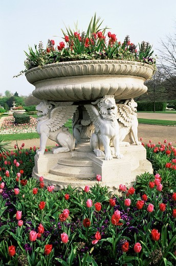 England, Europe, London, Regents Park, Avenue Garden, Floral, Floral Display, Flower, Flowers, Garden, Gardening, Hort : Stock Photo