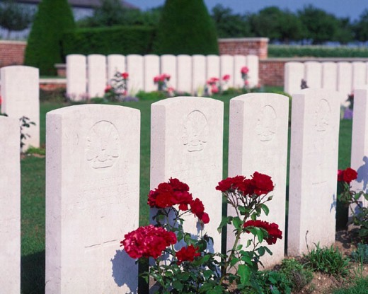 Albert, cemetery, Commonwealth Were Cemetery, France, Europe, graves, gravestones, military cemetery, Picardy, Somme : Stock Photo