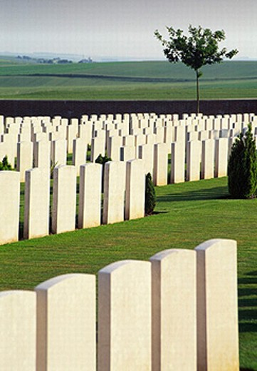 cemetery, France, Europe, graves, gravestones, military cemetery, Ovillers, Picardy, Somme, First World War, militar : Stock Photo