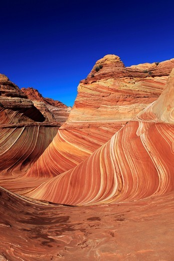 Coyote Buttes North, Arizona, USA, North America, : Stock Photo