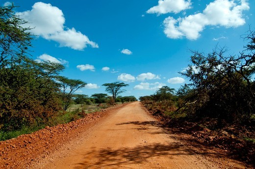 East Africa, Kenya, Amboseli, road Kilimanjaro : Stock Photo