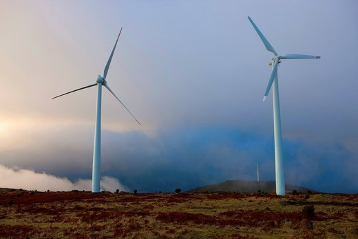 Paul there Serra, Portugal, Europe, Madeira, plateau, fog, wind turbines, wind energy, alternative energy, morning light : Stock Photo