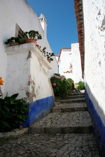 Stock Photo: 1597-138782 Portugal, Europe, Obidos, houses, homes, lane, stair, white, blue, walls