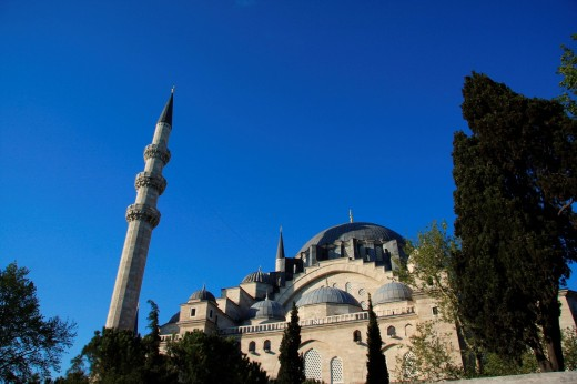 Istanbul, Turkey, mosque, sultan Süleyman, minaret, tree : Stock Photo