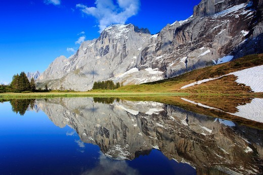 Stock Photo: 1597-140776 Alp, Alps, view, mountain, mountains, mountain spring, mountain massif, mountain lake, Bern, Bernese Oberland, Engelhörner, rock face, spring, mountains, summit, peak, granite, Grosse Scheidegg, reflection, Switzerland, Swiss Alps, Swiss mountains, lake,. Alp, Alps, view, mountain, mountains, mountain spring, mountain massif, mountain lake, Bern, Bernese Oberland, Engelhörner, rock face, spring, mountains, summit, peak, granite, Grosse Scheidegg, reflection, Switzerland, Swiss Alps, Swiss mounta