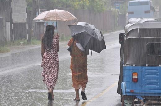 Stock Photo: 1597-142329 Asia, Ceylon, women, wives, monsoon, rain, precipitation, moisture, wetness, rains, umbrella, rain protection, weather, raining, South Asia, storm, thunderstorm,