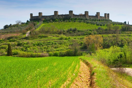 Monteriggione, Italy, Europe, Tuscany, town, city, town wall, towers, rooks, fields, trees, spring : Stock Photo