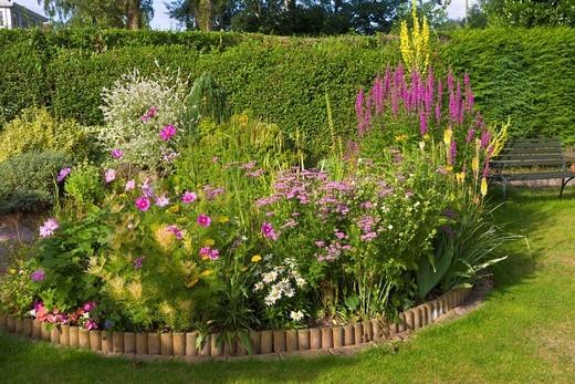Garden herbaceous border in summer PR : Stock Photo
