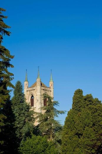 Stock Photo: 1597-143231 Switzerland, Europe, Vaud, Vevey, autumn, tree, St. Martin, church, canton,