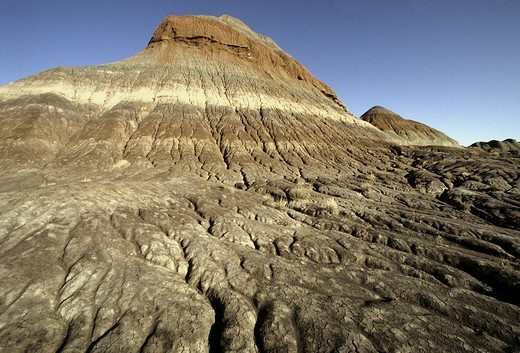 Stock Photo: 1597-143514 Petrified Forest, National Park, Arizona, USA, United States, America,