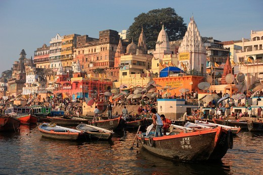 Stock Photo: 1597-144165 Varanasi, Benares, Uttar Pradesh, India, Asia, Ganges, mother Ganga, holy river, Hinduism, Hindu, Hinduism pilgrim, holy city, holy place, rebirth, Nirvana, flower, holy cow, cremation, burning ghat