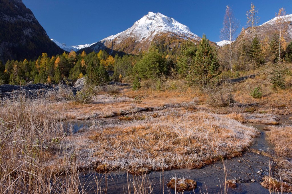 Stock Photo: 1597-145271 Panorama, mountain, mountains, autumn, Valais, Wallis, Derborence, high_, moor, moor, Tete Pegnat,
