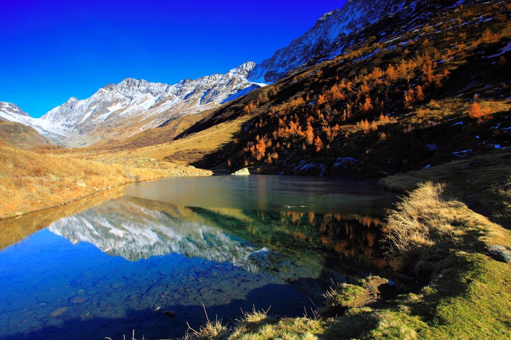 Stock Photo: 1597-145876 View, Lötschenlücke, Fafleralp, basic lake, autumn, colors, larch, larches, larch wood, Lötschenlücke, Lötschental, valley, Unesco, world heritage, Valais, Switzerland, Europe, world heritage, glassy,