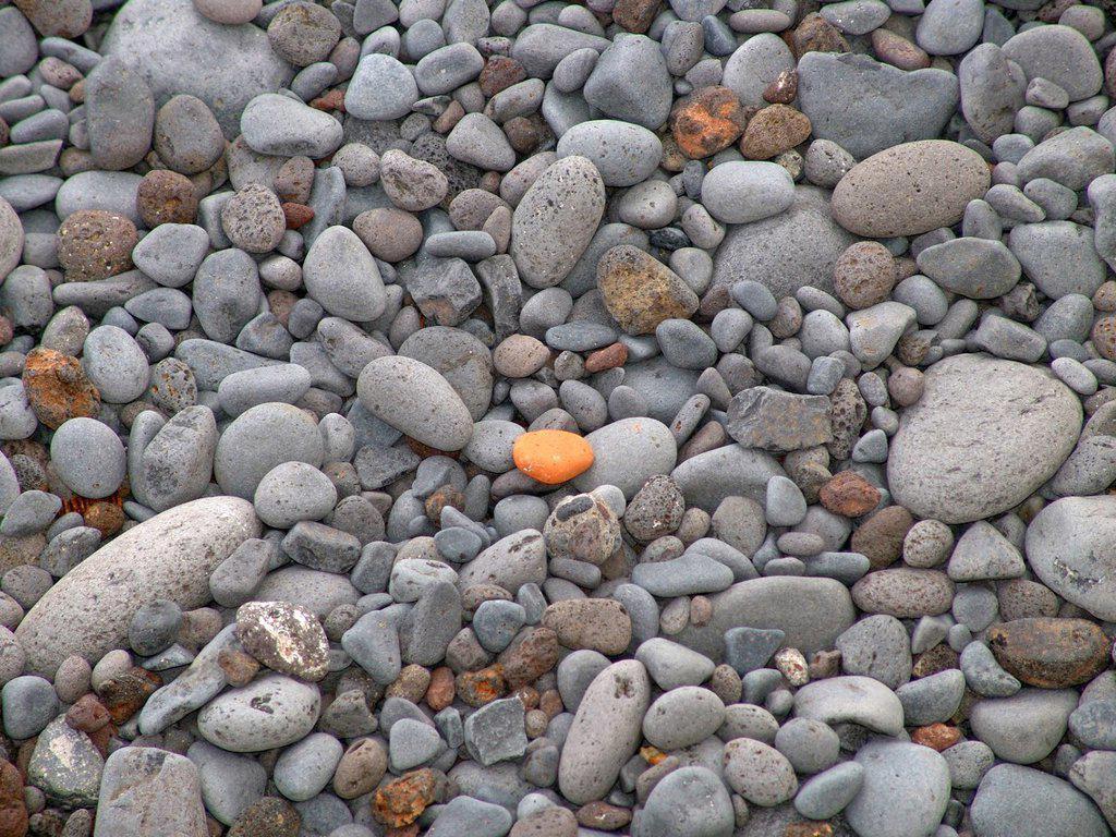 Europe, Portugal, Madeira, Funchal, gravel beach, detail, pattern, stone, beach, seashore, pebble : Stock Photo