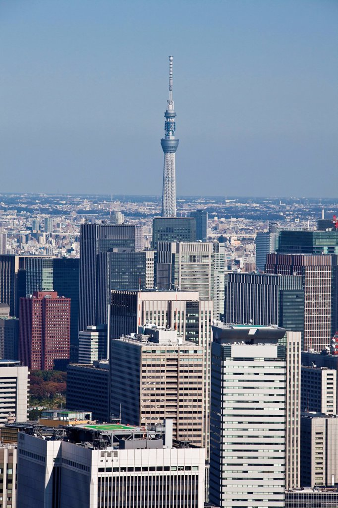 Japan, Asia, Tokyo, city, Tokyo Skyline, Central Tokyo, Sky Tree Tower, architecture, big, buildings, busy, downtown, huge, metropolis, panorama, skyline, tower, travel, touristic : Stock Photo