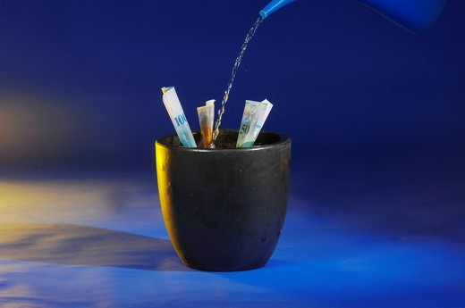 Blue, plant, watering can, water, grow, put on, invest, growth, money, Switzerland, : Stock Photo