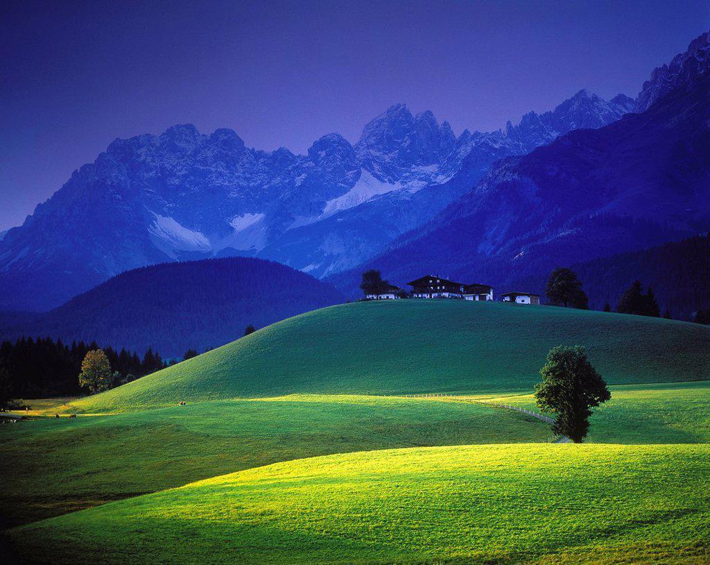 Stock Photo: 1597-158441 Austria, Europe, Tyrol, Kitzbühel, farm, Wilder Kaiser, mountains, Elmauer Halt, Kaiser mountains, meadows, scenery, evening light, mood, autumn, autumnal, horizon, skyline, trees