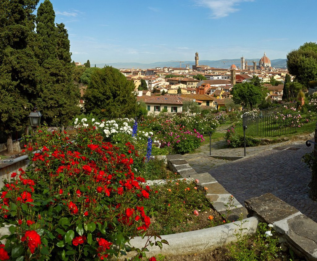 Stock Photo: 1597-161585 Florence, Italy, Europe, Tuscany, Toscana, town, city, overview, park, flowers