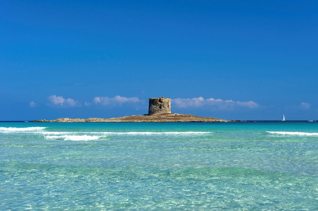 Stock Photo: 1597-162014 Italy, Sardegna, Sardinia, Europe, European, island, isle, islands, isles, Mediterranean Sea, day, Stintino, coast, seashore, coasts, seashores, coastal, scenery, nature, sea, military tower,