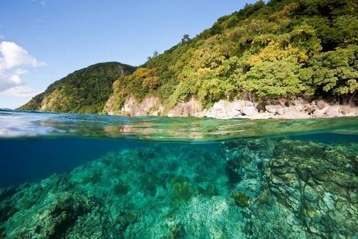 Coast of Dominica, Caribbean Sea, Dominica : Stock Photo