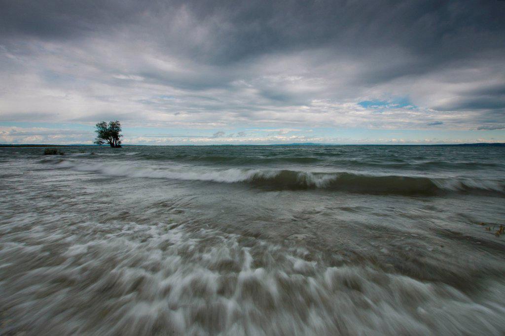 Austria, Europe, Vorarlberg, landscapes, Rheinholz, Rheindelta, Sunrise, Bodensee, Lake Constance, lake, nature, water, clouds : Stock Photo