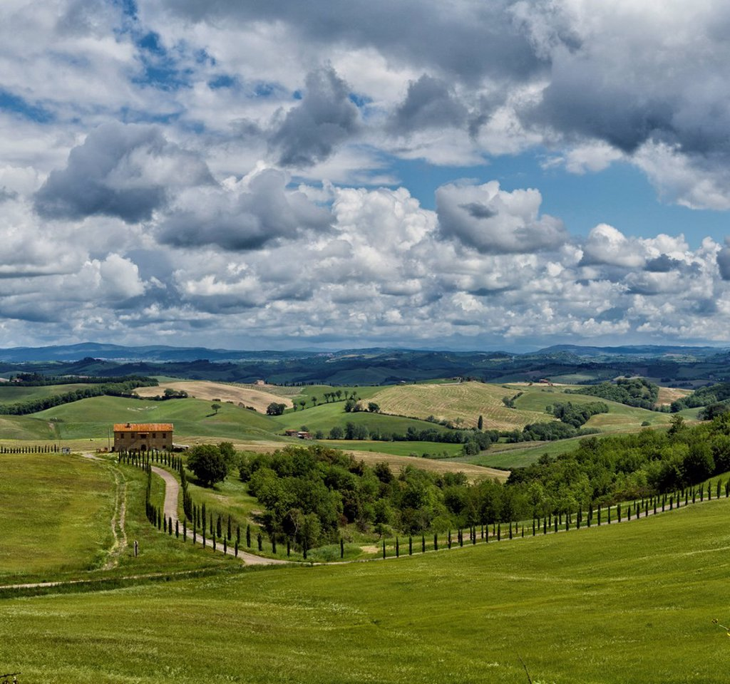 Stock Photo: 1597-163466 Murlo, Italy, Europe, Tuscany, Toscana, fields, scenery, green, clouds, hills