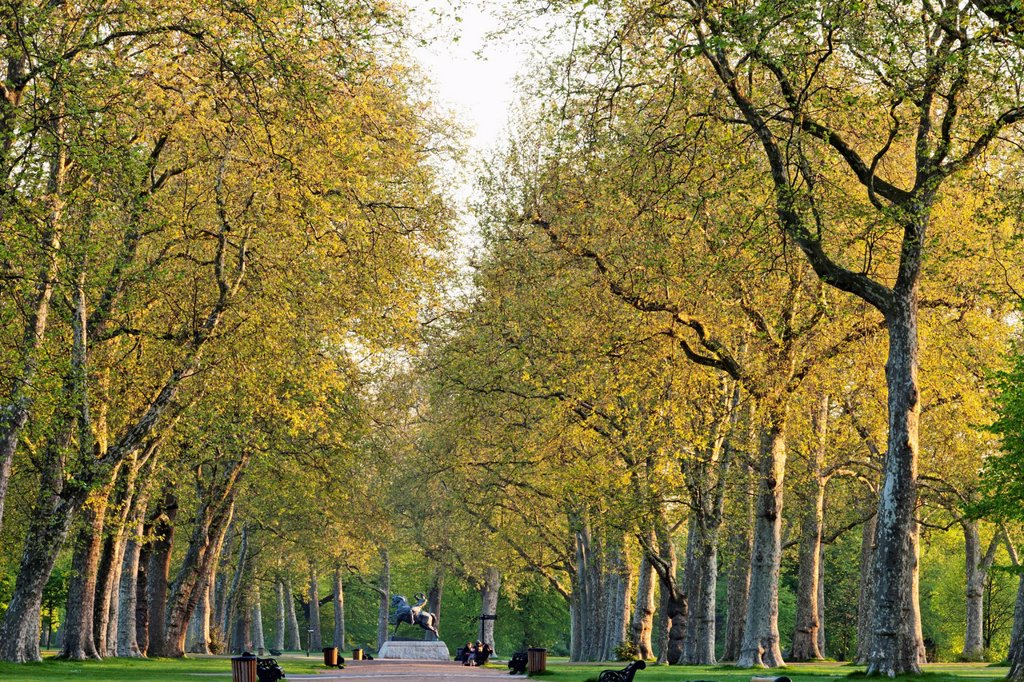 UK, United Kingdom, Great Britain, Britain, England, Europe, London, Kensington, Kensington Gardens, Park, Parks, Gardens, Royal Gardens : Stock Photo