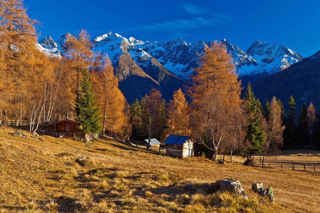 Austria, Europe, Tyrol, Tirol, Kaunertal, Schnadigen, pasture, willow, alp, huts, hunt, hut, mountains, Kaunergrat, Ötztal, Alps, autumn, late autumn, larches, nobody, rest, silence, calmness, rest, panorama, blue, brown, vacation, snow, sky, traveling, O. Austria, Europe, Tyrol, Tirol, Kaunertal, Schnadigen, pasture, willow, alp, huts, hunt, hut, mountains, Kaunergrat, Ötztal, Alps, autumn, late autumn, larches, nobody, rest, silence, calmness, rest, panorama, blue, brown, vacation, snow, sky,  : Stock Photo