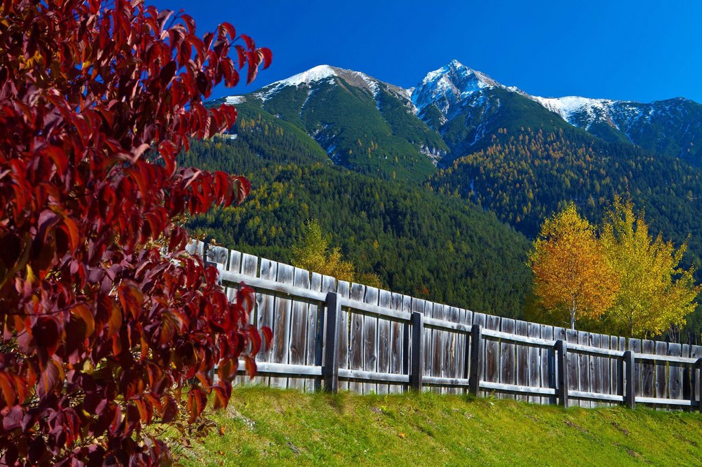Austria, Europe, Tyrol, Tirol, Seefeld, Reither Spitzer, Reither, point, peak, Karwendel, fence, Red, Yellow, green, meadow, mountain, summit, peak, autumn, wood, forest, vacation, traveling, tourism place, blue, white, snow, shrub, leaves, birches, wood : Stock Photo