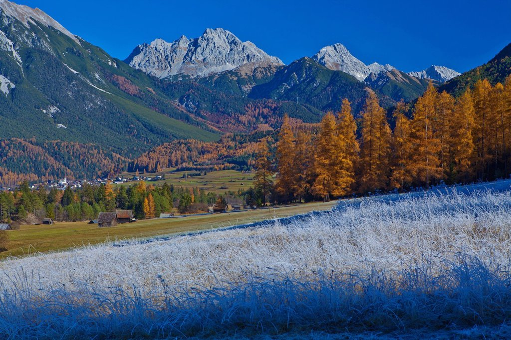 Stock Photo: 1597-170028 Austria, Europe, Tyrol, Tirol, Gurgltal, Nassereith, meadows, white frost, autumn, late autumn, fields, larches, mountains, Mieming, chain, Marienbergspitze, Dormitz, Stadel, vacation, nature, protected, safe, scenery, white, blue, traveling, rest, silenc. Austria, Europe, Tyrol, Tirol, Gurgltal, Nassereith, meadows, white frost, autumn, late autumn, fields, larches, mountains, Mieming, chain, Marienbergspitze, Dormitz, Stadel, vacation, nature, protected, safe, scenery, white, blue, traveling,