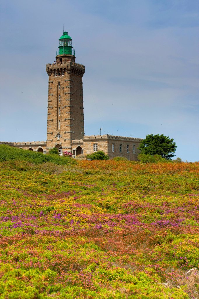 Cap Fréhel, France, Europe, Brittany, department Côtes d´Armor, coast, lighthouse : Stock Photo