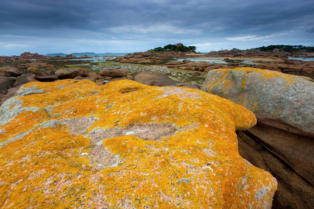 Stock Photo: 1597-175625 Trégastel, France, Europe, Brittany, department Côte d´Armor, Côte de granite rose, coast, low, ebb, tide, granite rock, rock, cliff, lichens