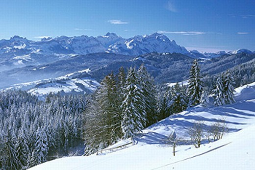 Stock Photo: 1597-18288 Alpstein, Appenzell, mountains, Saint Anton, Santis, scenery, landscape, snow, winter, wood