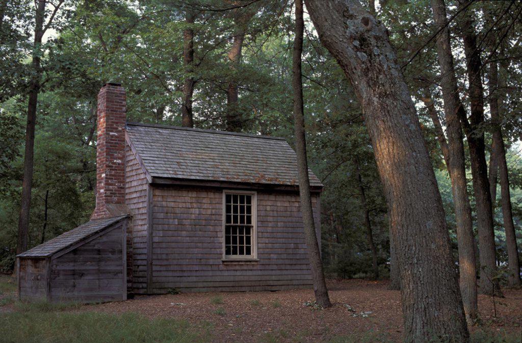 Stock Photo: 1597-19227 America, Massachusetts, near Concord, Thoreau cabin, Henry David, Thoreau, replica, Walden Pond, United States, Nort