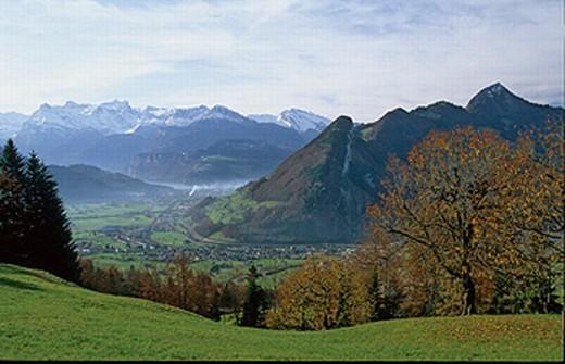 Stock Photo: 1597-19505 Autumn, Autumn colors, Blackenstock, Canton Schwyz, Central Switzerland, Europe, Engelberger Rotstock, Fall colors,