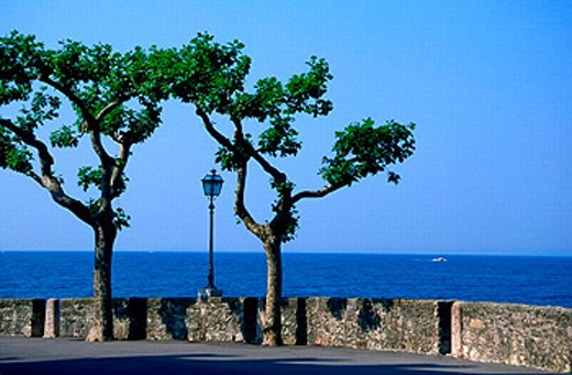 Lake Garda, Italy, Europe, Lago di Garda, lake, Lake Garda, lantern, northern Italy, Shore, street, trees, wall : Stock Photo