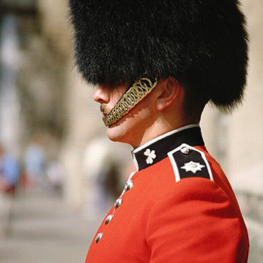 Stock Photo: 1597-2131  England, Great Britain, Europe, London, royal guard, life,