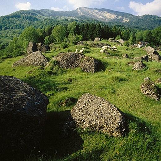 Stock Photo: 1597-2238  landslip area, boulders, Goldau, scenery forms, Switzerland, Europe, Schwyz,