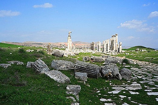Apamea, Apameia, Roman, Roman, antiquity, antique, columns, ruins, Syria, Middle East, : Stock Photo