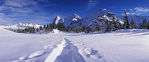 Stock Photo: 1597-27755 scenery, landscape, Murren, winter scenery, track trace, Snowy_purely, snow, mountains, Alps, Eiger, Monch, Jungfrau,