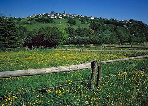 village, Warstein_deer mountain, scenery, landscape, flower meadow, fence, nature reserve, Arnsberg wood, forest, Saue : Stock Photo
