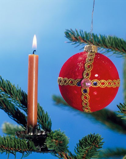 Stock Photo: 1597-33071 Christmas, Christmas tree, Christmas tree, tree, detail, branches, branch, candles, candle, ball, sphere, needles, bro