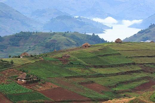 Stock Photo: 1597-33636 Lake Mburo, national park, Uganda, Africa, Uganda, Africa, Ecosystem, Ecosystems, Nature, national park, parks, ugnada