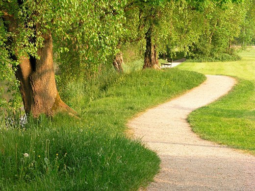 Stock Photo: 1597-36414 Switzerland, Europe, promenade, way, riverside, shore, river, landscape, bench, trees, nature