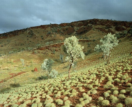 Stock Photo: 1597-3928  Australia, scenery, trees, hills, Karijini, national park, mood, western Australia,