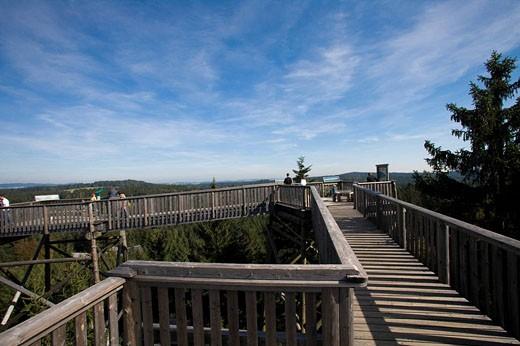 Austria, Europe, Canopy walk, Kopfing im Innkreis, trees, staircase, wood, wooden, forest, adventure, nature, Tree_Top : Stock Photo
