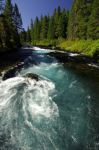 USA, America, United States, North America, Oregon, Metolius River, near Three Sisters, Central Oregon, water, nature, : Stock Photo